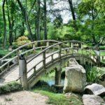 Piękny ,a także uporządkowany ogród to zasługa wielu godzin spędzonych  w jego zaciszu w trakcie pielegnacji.